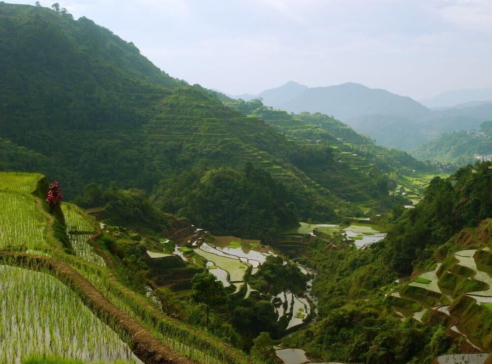 Cordillera Region, the Philippines - Unique Holidays and
