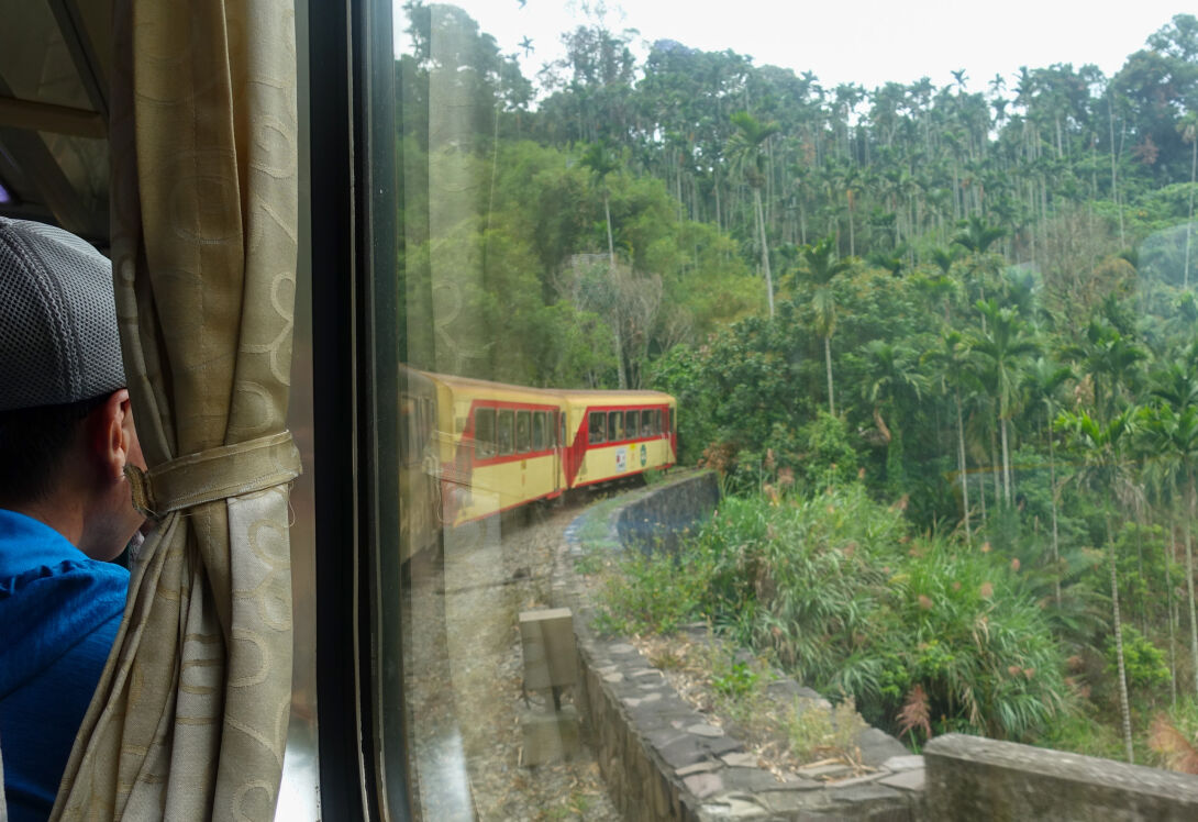 Take a ride on the Alishan Forest Railway