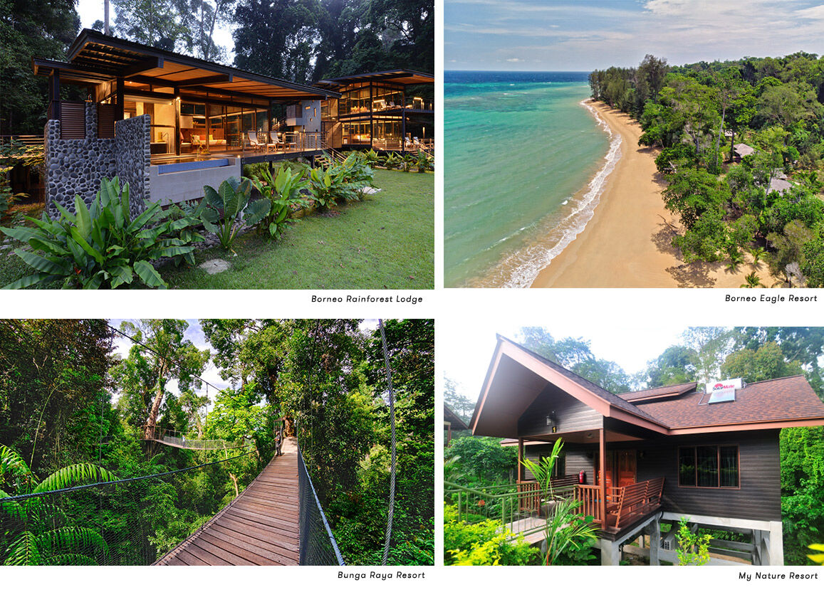 Borneo Competition Hotels