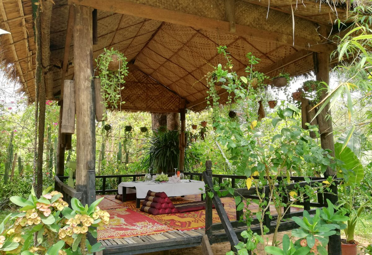 Gourmet picnic breakfast in Angkor Archaeological Park