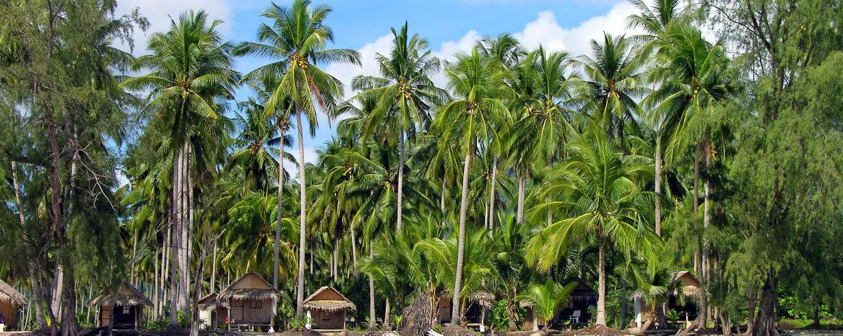 Thailand<br>Honeymoons