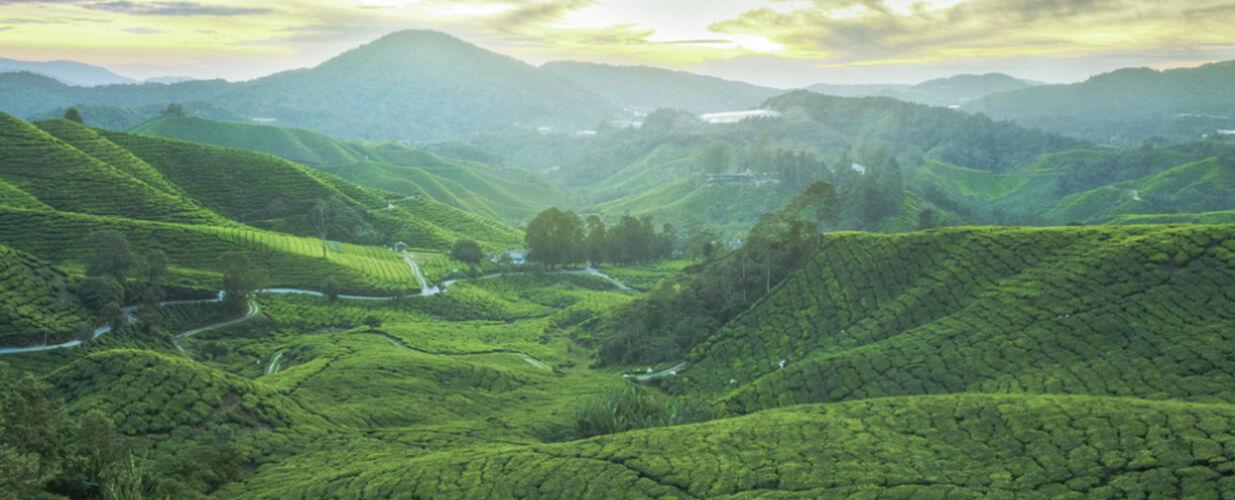 <br>Malaysia