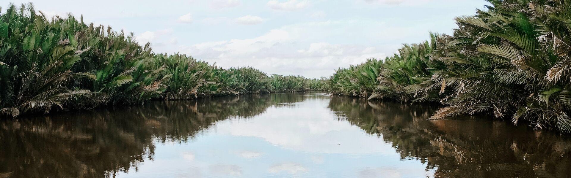 Kalimantan, Indonesia Holidays with Selective Asia