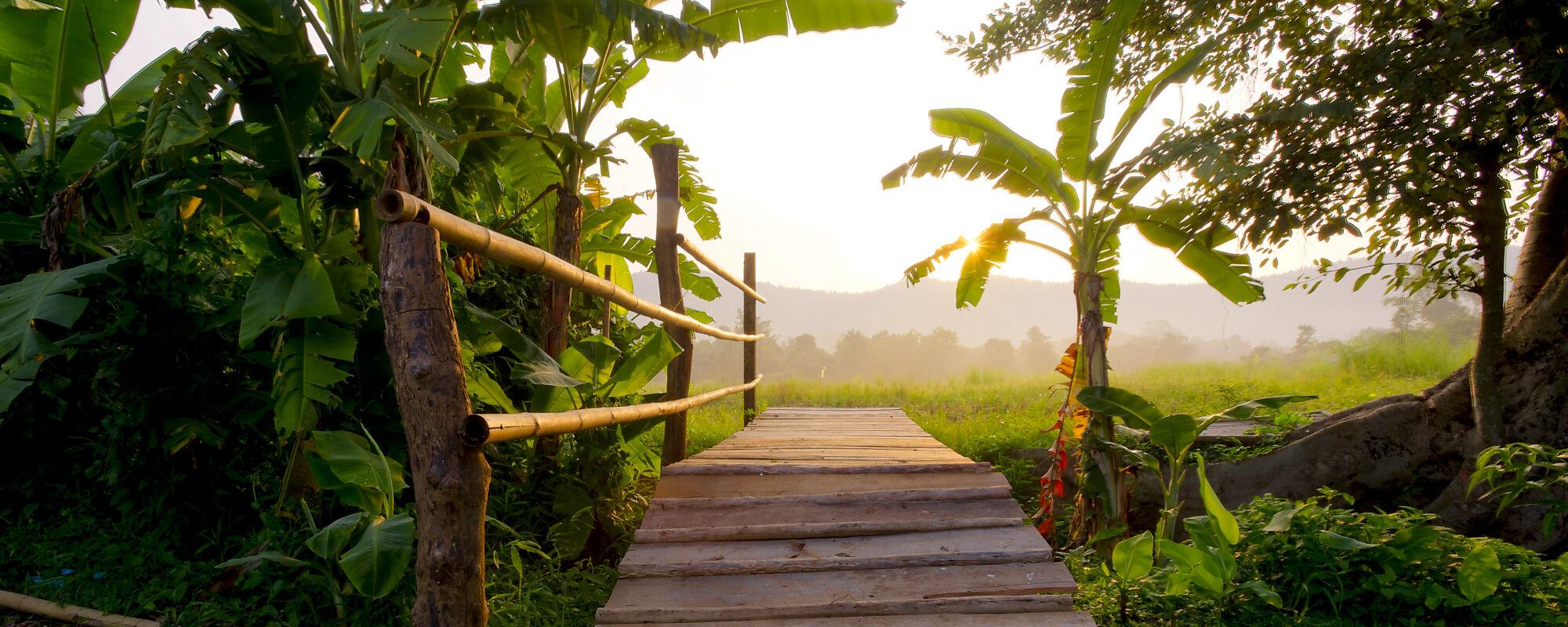 <br>Thailand