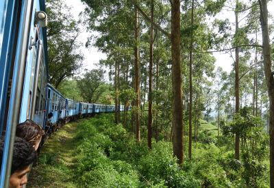 Tea Country train through Sri Lanka's mountains