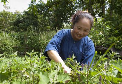 Rural family life at Thailand's Khum Lanna