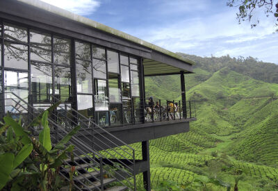Cool off at the Cameron Highlands hill station