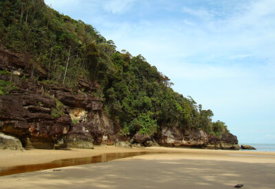 Wildlife watching in Bako National Park