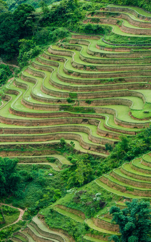 Vietnam holidays with Selective Asia