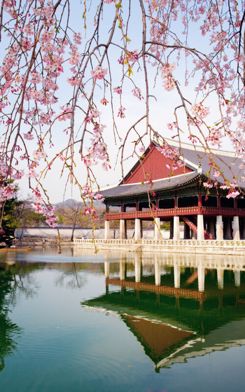 South Korea Honeymoons