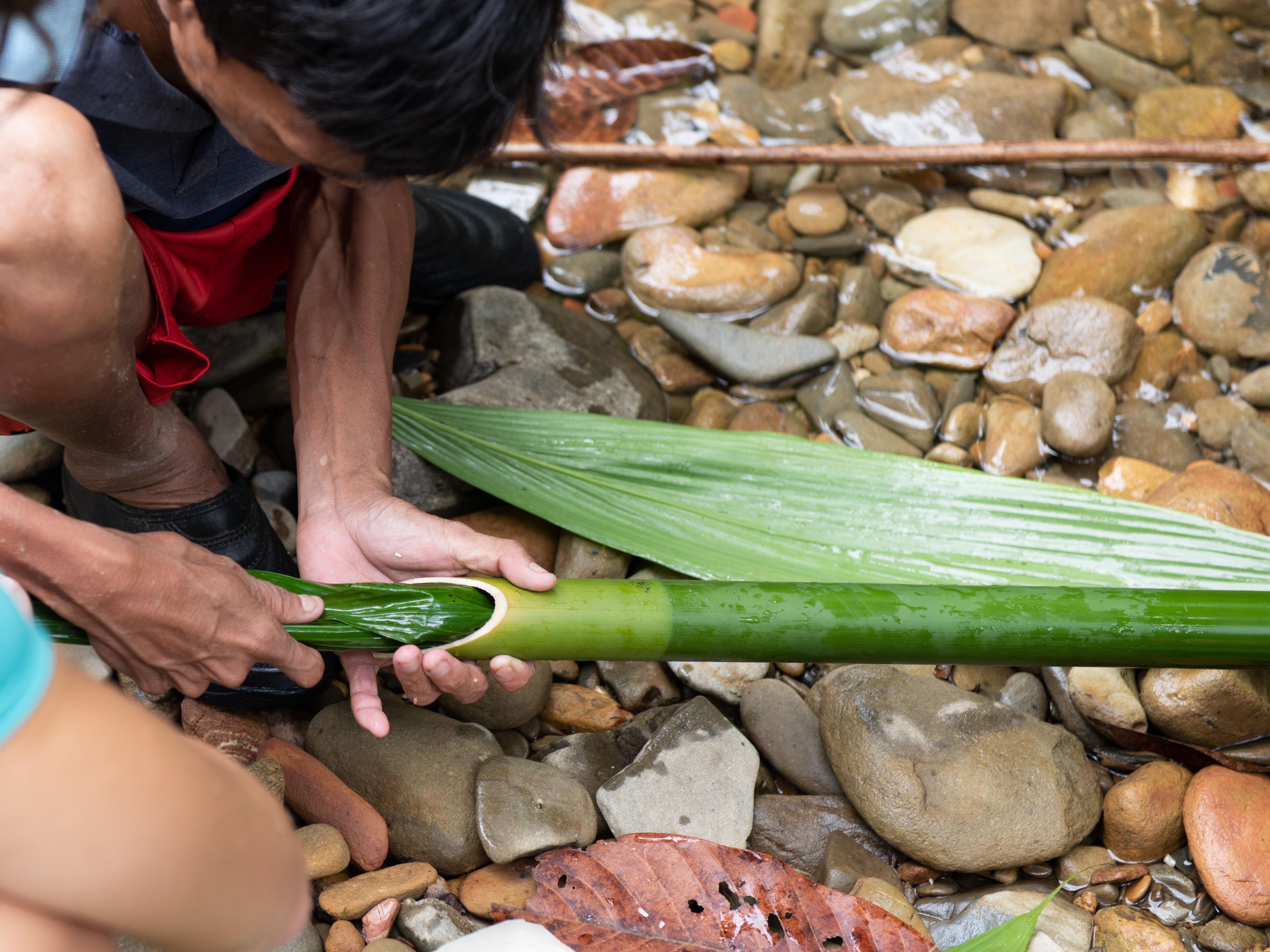 Borneo Holiday: Orang-utans & Ibans