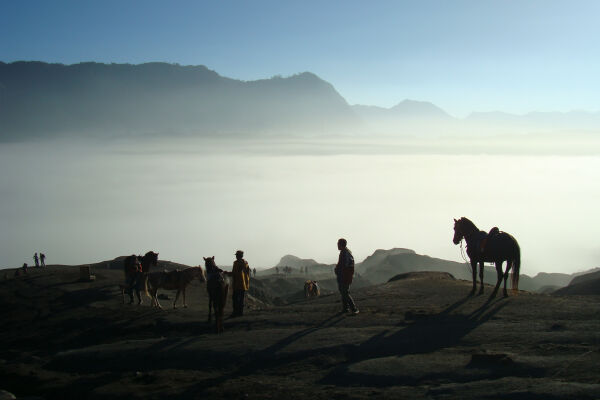 Read about climbing<br>Mount Bromo