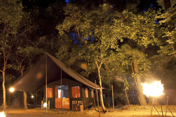 Safari tent in the Sri Lankan undergrowth