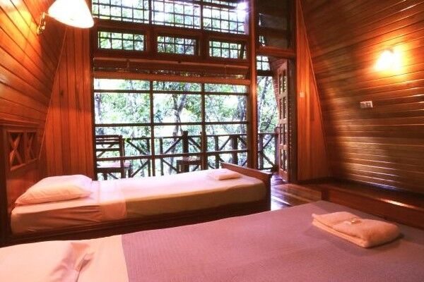 Inside a large wooden cabin looking out at the rainforest