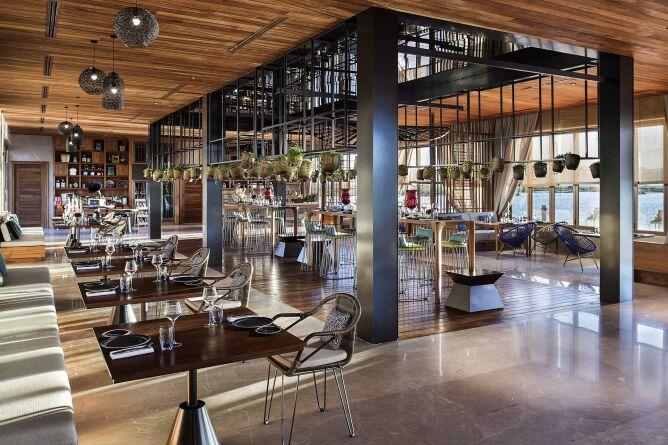 Roots organic restaurant