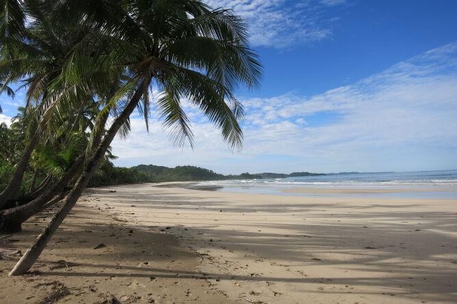Unpsoilt beach