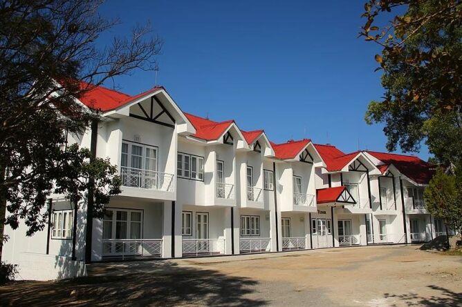 Pine building exterior