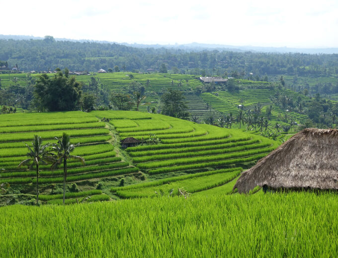 Bali & Lombok With Ease