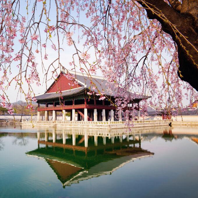 South Korea Honeymoons