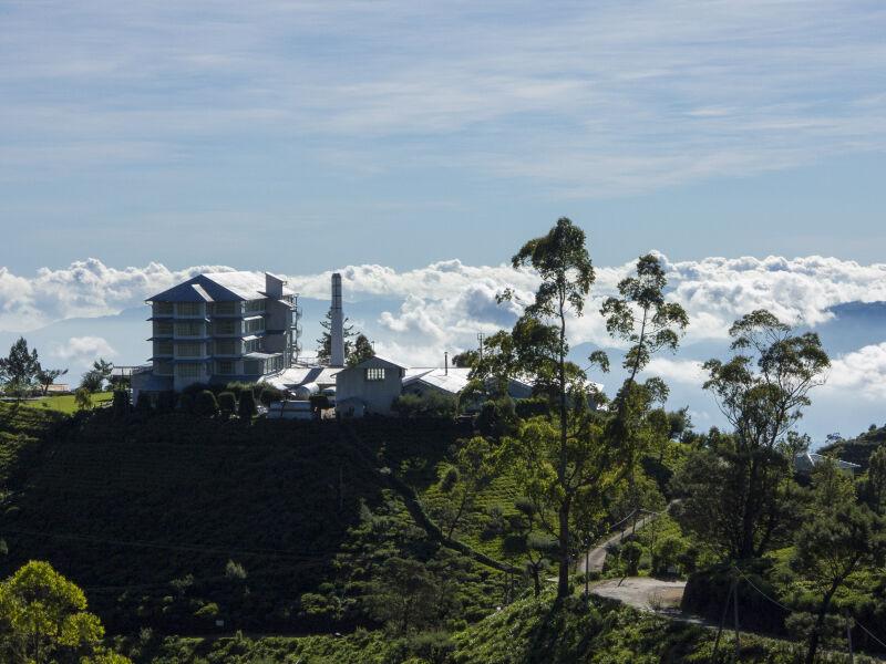 Sip Ceylon on Sri Lanka's emerald tea farms…