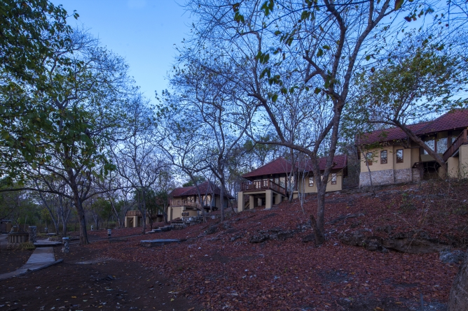 Jungle Lanai Cottages
