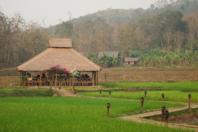 The grounds at Kamu Lodge