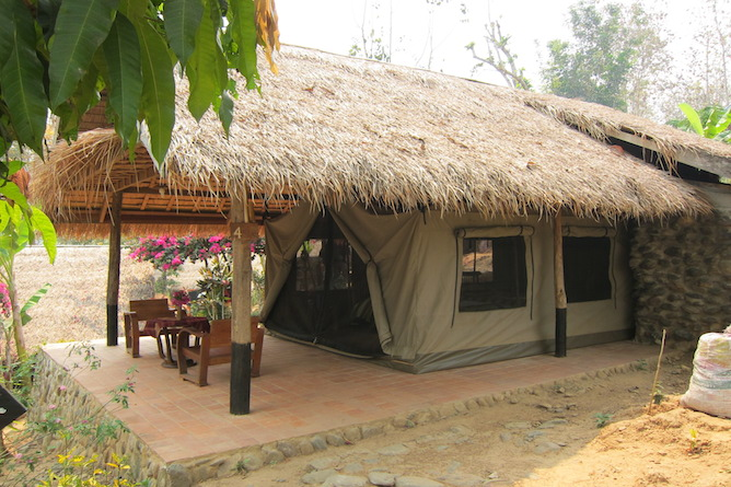 Thatched solar powered safari style cabin