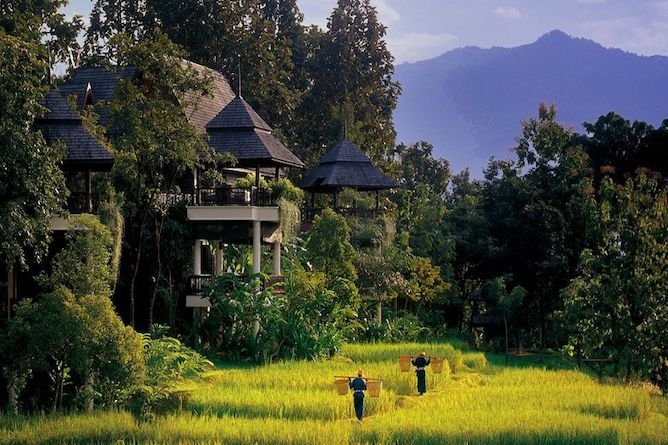 The breath-taking Four Seasons resort at Chiang Mai