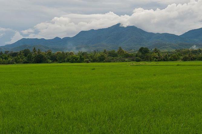 Khum Lanna. A country retreat