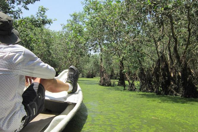 Sit up front as you slowly explore the intricate waterways