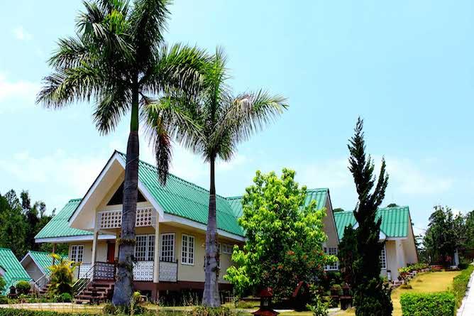 Pine Hill Resort
