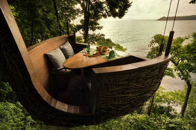 Unique tree-pod dining