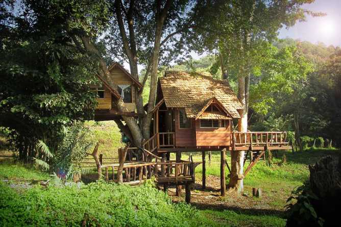 Accommodation is tree house style!